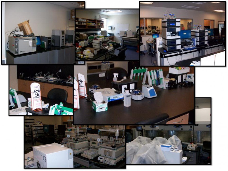 Collage of the Round Rock lab